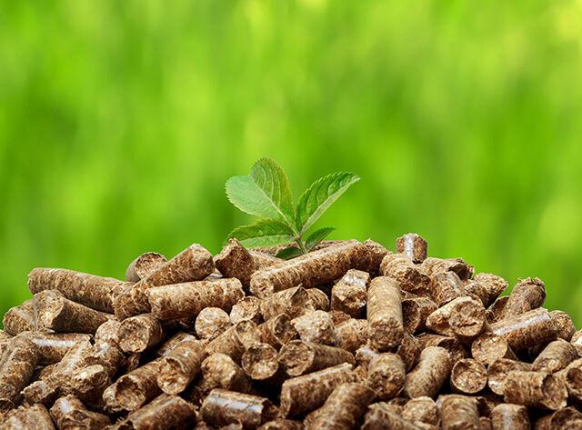 vyplati se topit biomasou
